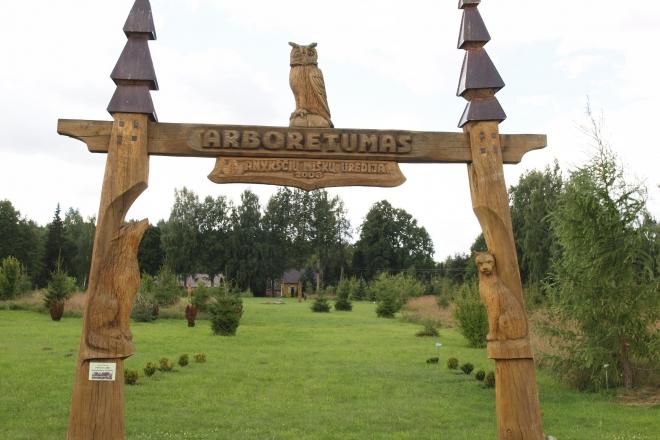 Forest Museum. Forest Cognitive Path. Arboretum. Sculpture Park