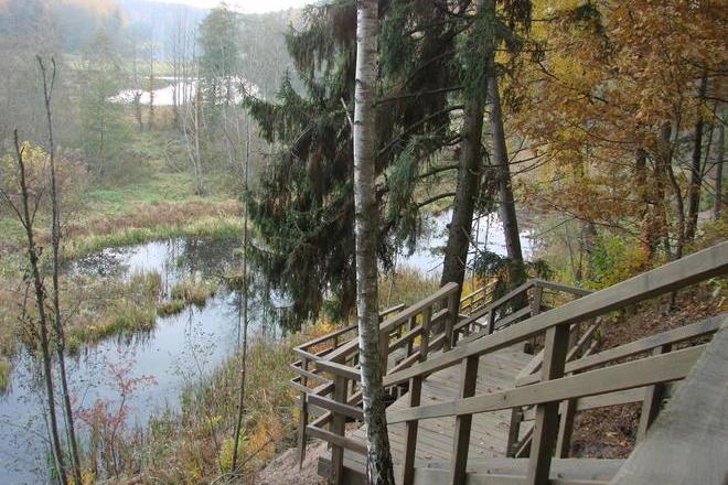 Auto-Route: Anykščiai - Kavarskas