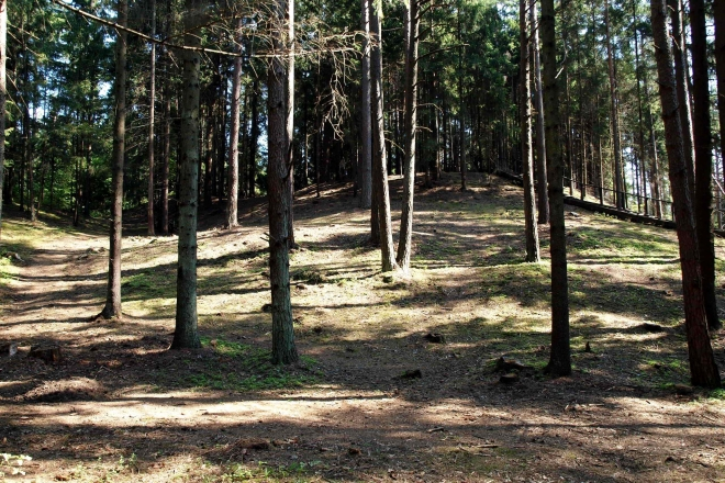 Palatavis Mound – the Places of Coronation of the King Mindaugas