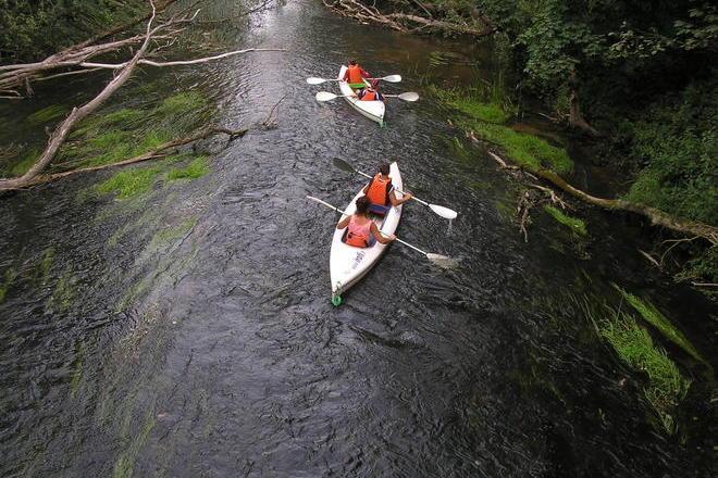 Water Route - The Meanders of Virinta