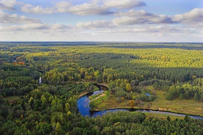 The Right Shore Wellness path of Šventoji river