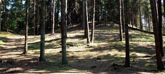 Palatavis Кургана – места коронации короля Миндаугаса