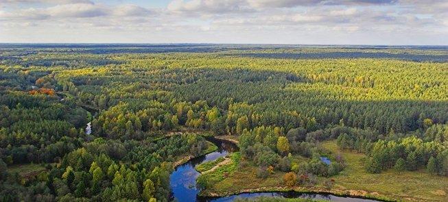 Оздоровительная тропа правого берега реки Швентои